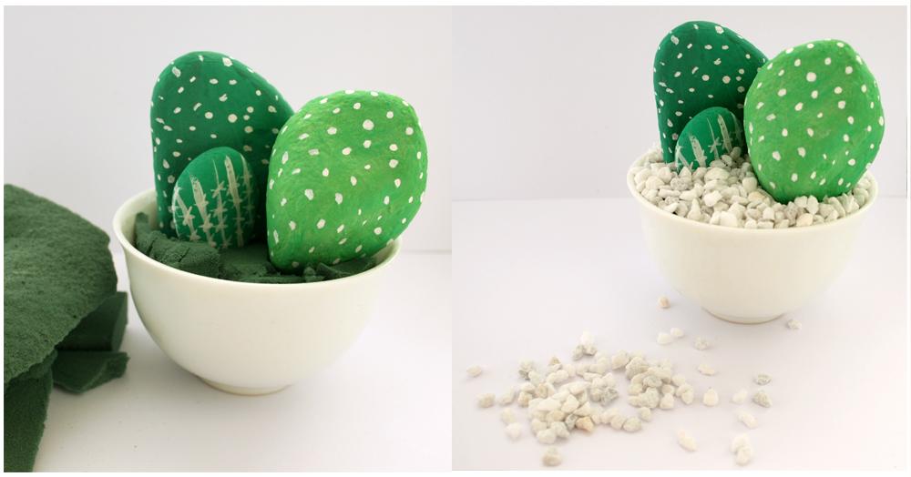 kaktus_3